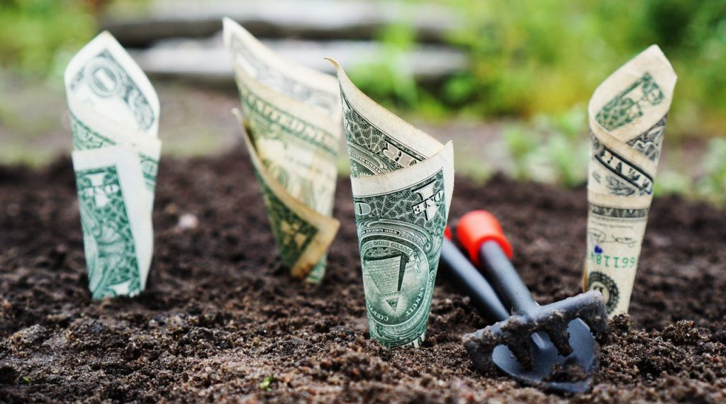 Seeds DollarBills e1568730919139 | Bogart Wealth