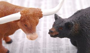 Bull next to bear