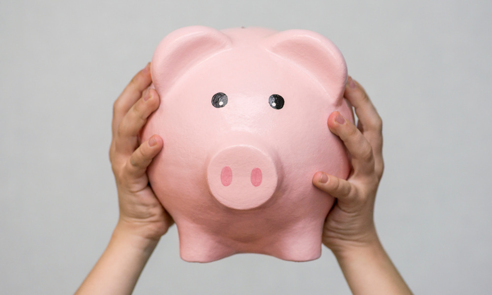 person holding a piggy bank with two hands