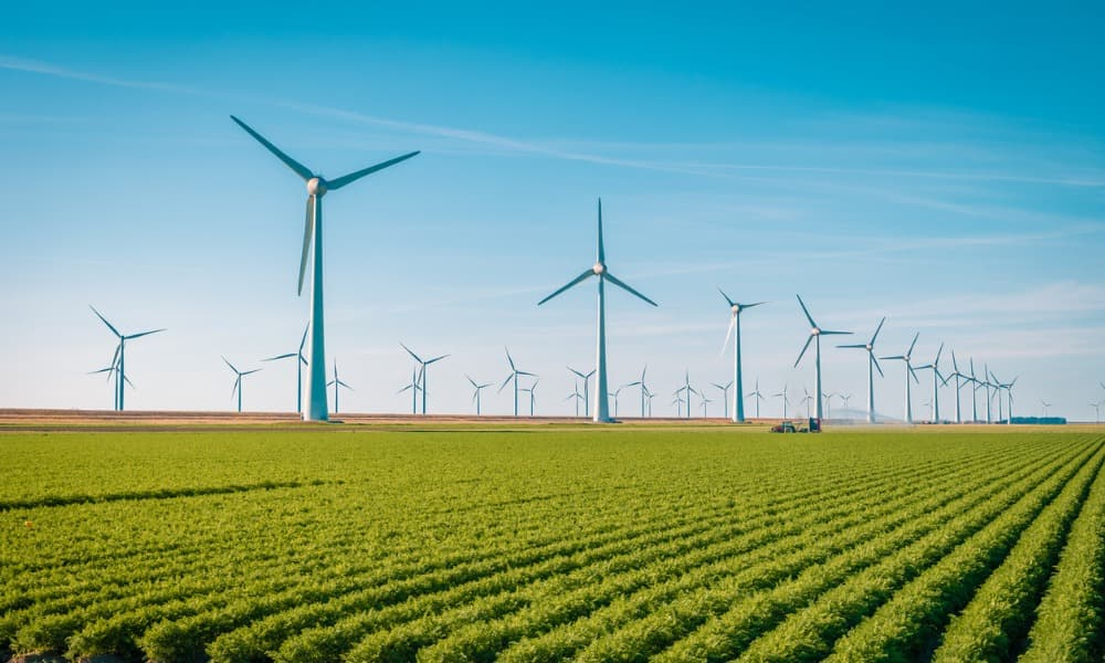An investor buys clean energy stocks in a wind farm.
